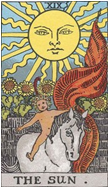 太陽 THE SUN
